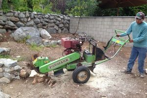 Photo #2: Stump Grind, tree trimming and landscape