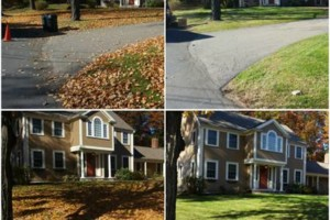 Photo #3: Eagle Contracting. Fall Cleanups!