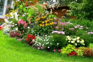 Photo #1: Jorge & Brothers. Gardening Services & Landscaping