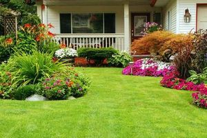 Photo #2: Jorge & Brothers. Gardening Services & Landscaping