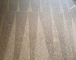 Photo #1: DVA Carpet Cleaning in Los Angeles