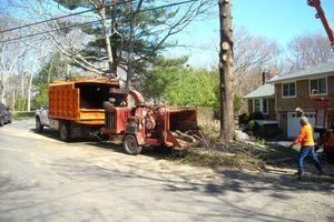 Photo #10: BULLDOZING, TREE REMOVAL ETC