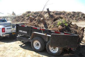 Photo #7: BULLDOZING, TREE REMOVAL ETC