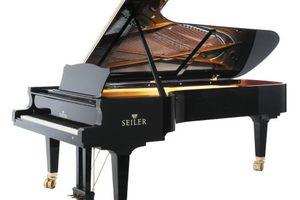 Photo #1: PRIVATE PIANO LESSONS, 1ST LESSON 50% OFF!