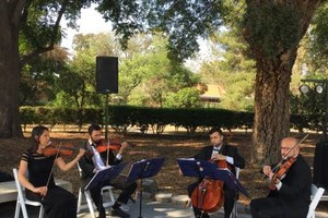 Photo #3: Bravo String Quartet, Violinist for Weddings and other Special Occasions