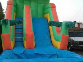 Photo #8: Jumper rental for $65