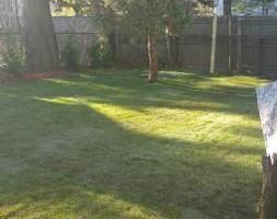 Photo #6: Alfredo's Lawn Care