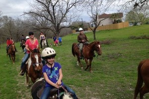 Photo #1: Horseback Riding Lessons $20/hr for Children and Adults
