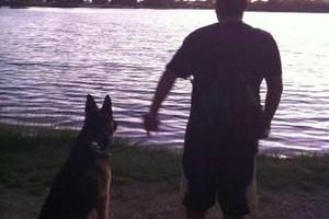 Photo #4: Dog walker/ pet sitter