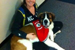 Photo #3: Dog Sitter/Walker!!