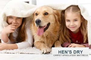 Photo #1: Safe & Non Toxic Carpet & Upholstery, Mattress Cleaning