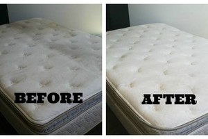 Photo #5: Safe & Non Toxic Carpet & Upholstery, Mattress Cleaning