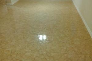 Photo #7: Toro & Son Co. - we sell & install tile