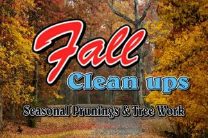 Photo #10: Falls the time to prune your trees! Call us for a free estimate!