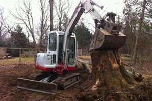 Photo #14: Falls the time to prune your trees! Call us for a free estimate!