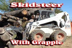 Photo #15: Falls the time to prune your trees! Call us for a free estimate!
