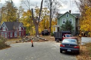Photo #16: Falls the time to prune your trees! Call us for a free estimate!