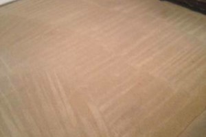 Photo #2: Professional Carpet Steam Cleaning. Holiday Specials!