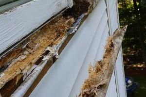 Photo #17: Roof Maintenance Program $200* All Residential/Commercial Maintenance