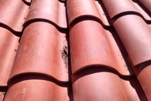 Photo #1: ROOF REPAIR SPECIALIST. REPAIR SAME DAY!