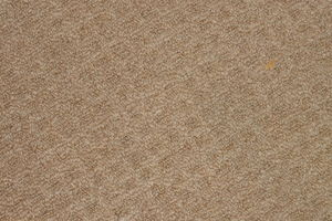 Photo #1: CarpetMuscle - Original Carpetmuscle Carpet Cleaning & Repair - $35