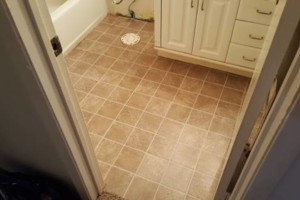 Photo #6: Floor remodeling