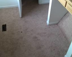 Photo #11: CARPET, LAMINATE, VINYL (Sales/installations with Mill direct pricing)