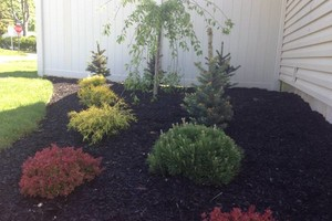 Photo #4: 9 BROTHER'S LANDSCAPING. FALL CLEAN UP! AFFORDABLE PRICES!