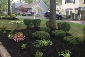 Photo #3: 9 BROTHER'S LANDSCAPING. FALL CLEAN UP! AFFORDABLE PRICES!