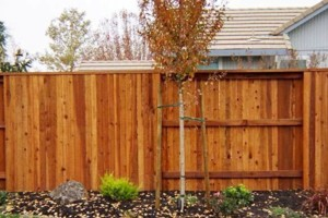 Photo #12: Free estimate for your Fence Installation! LANDAS FENCE! Wood, Vinyl, Chainlink!