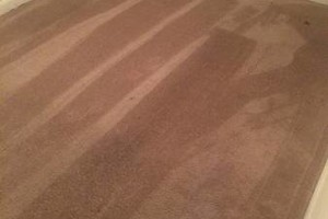 Photo #9: Carpet Cleaning dry in 1 hour!