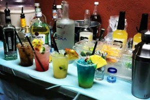 Photo #8: Briee Mixology. Mobile Bartender!