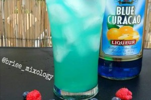 Photo #5: Briee Mixology. Mobile Bartender!