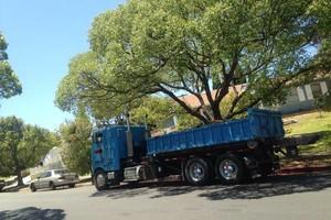 Photo #1: Hauling Demolition, Trash Pick-up. Bin Rental