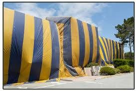 Photo #2: Free Fumigation Estimates...... Prices Low & will get rid of Termites
