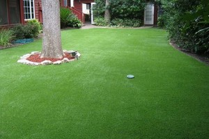 Photo #2: Austin's PREMIER Artificial Grass Landscaping Company!