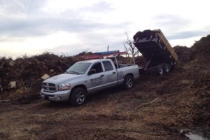 Photo #1: Odd Job Johnny. Fall Cleanups