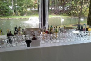Photo #9: HAVING A PARTY THIS WEEKEND, AND NEED WAITSTAFF?! CALL US!