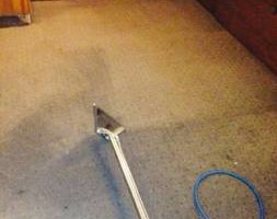 Photo #1: Super Green Carpet & Tiles Cleaning - Whole Carpet Cleaning & Pets Stains Removal