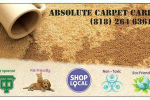Photo #1: Absolute Carpet & Upholstery Cleaning/Non-Toxic. Living Room $50