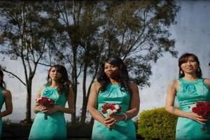 Photo #3: Wedding videographer* $250