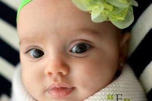 Photo #5: Newborn, Kids, & Family Photography