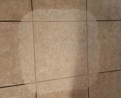 Photo #3: TILE CLEANING - NO SOAP NO CHEMICALS. ZERO-CHEM STEAM CLEANING