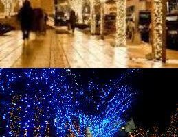 Photo #18: Holiday Lighting for all/ Christmas Lights done right