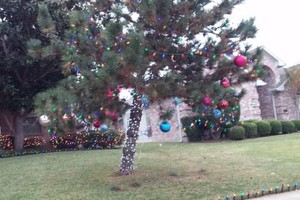 Photo #2: Holiday Lighting for all/ Christmas Lights done right