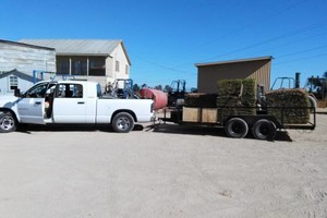 Photo #4: Transport, Moving, Hauling, and Debris Removal