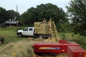 Photo #1: Hay rebaling