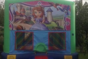 Photo #20: PARTY BOUNCE TIME - bouncers & water slides