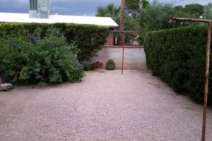 Photo #6: YARD SERVICE - clean up, cactus removal, planting, weeds removal