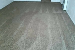 Photo #1: YAQUIS CARPET CLEANING - 4 rooms $69